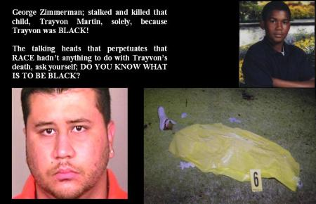 TRAYVON MARTIN - IN MEMORY OF