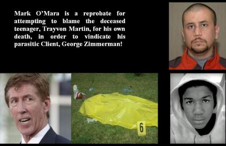 ZIMMERMAN TRIAL JULY 13 2013