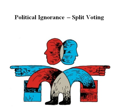 POLITICAL IGNORANCE - SPLIT VOTING - 2