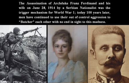 ARCHDUKE AND WIFE FRANZ FERDINAND ASSASSINATION WAR  WAR 1