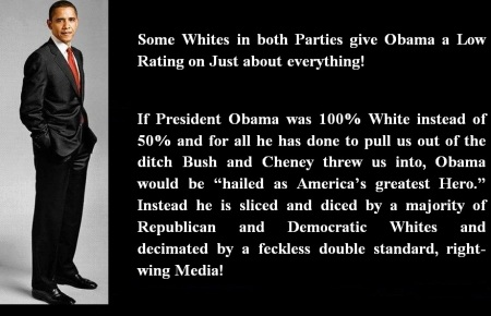 PRESIDENT OBAMA - SOME WHITES IN BOTH PARTIES