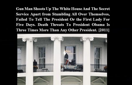 GUN MAN SHOOTS UP WHITE HOUSE 2011